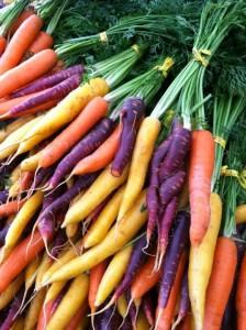 rainbow carrots-vert