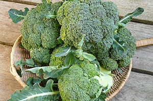 broccoli-2010