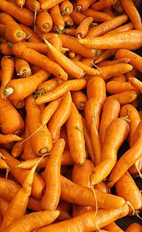carrots-bulk