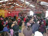 A barn dance at the packing shed