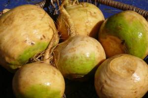 golden turnips