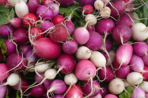 mixed radishes