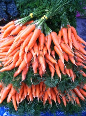Carrots fans bunched