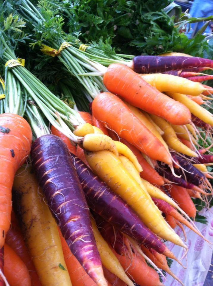 Organic Rainbow Carrots of Rainbow Carrots