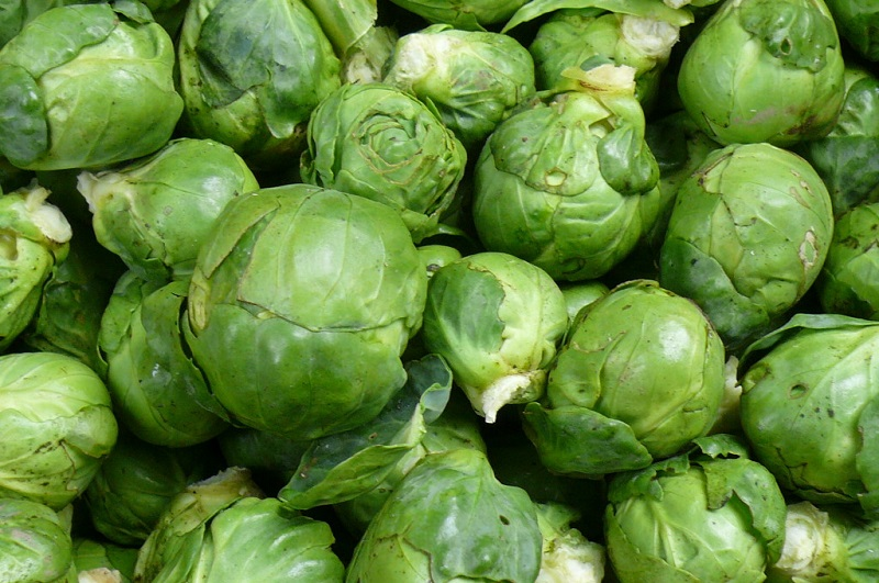 Brussels Sprouts | Recipes from Nash's Organic Produce