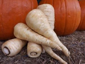 parsnips n pumpkins