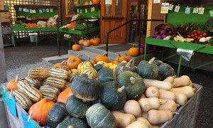 squash at the farm store
