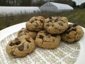 Barley Flour Cookies from Bre