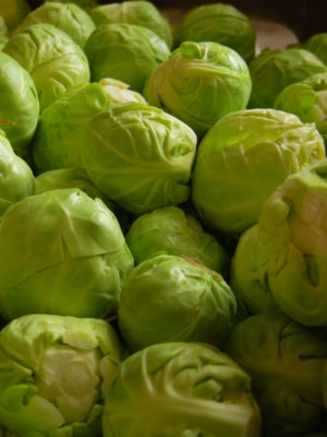 Brussels Sprouts close-up