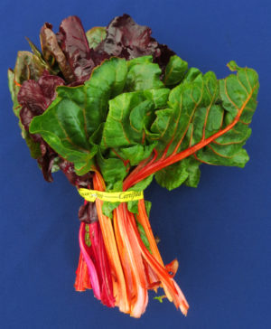 Chard Recipes From Nash S Organic Produce